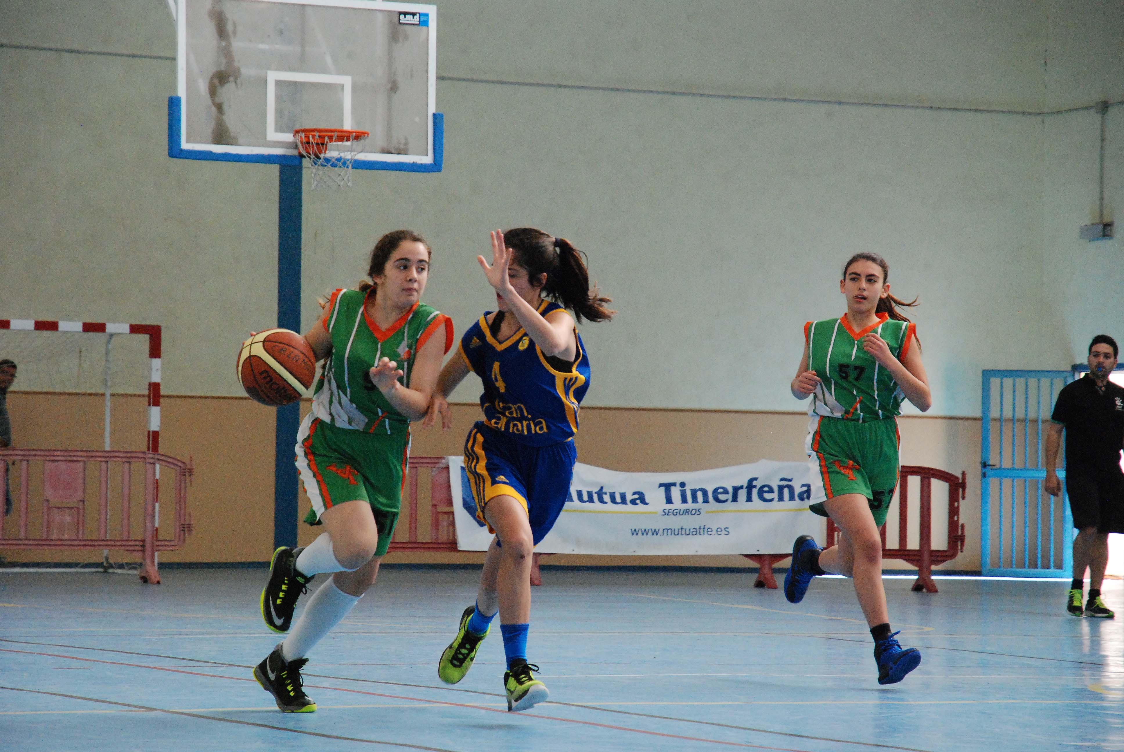 24 equipos tomarán parte en el Torneo de baloncesto Infantil San Sebastián de La Gomera